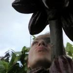 Column 'koffieTcacao #1′: Minder, beter, trager, duurder, dieper en heiliger